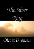 The Silver Ring book cover
